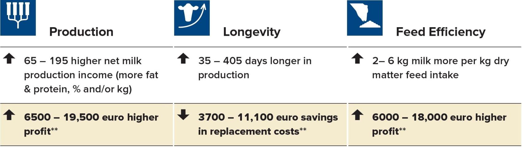 CRv Efficiency