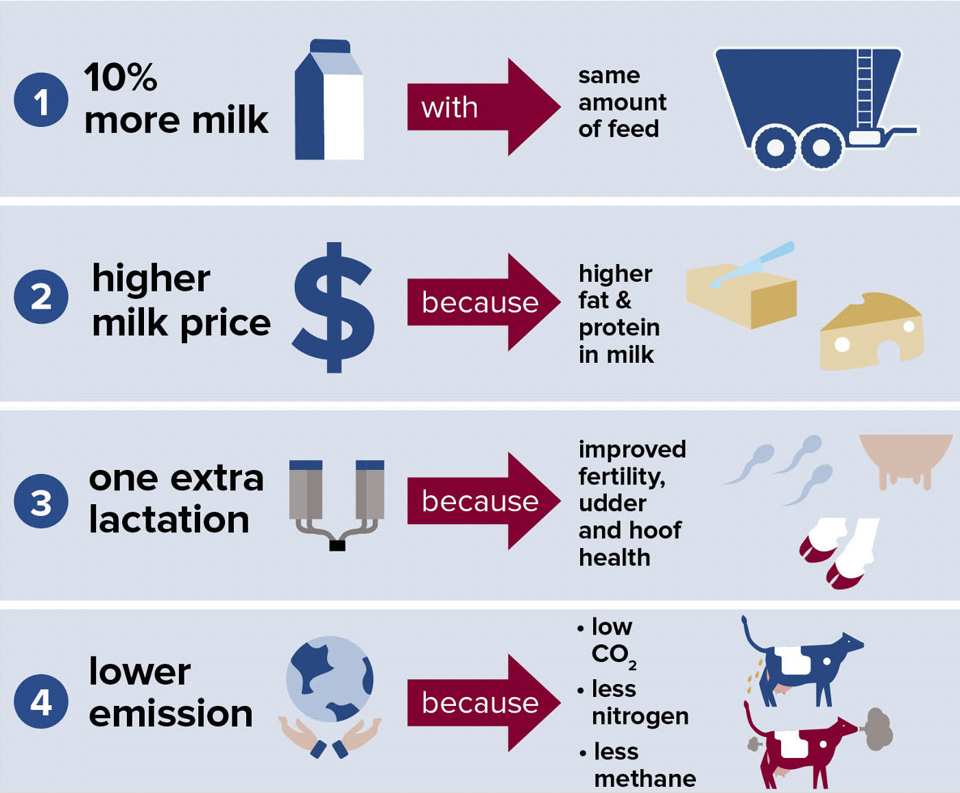 Healthy and efficient cows help make work more enjoyable, benefit the environment and contribute to a higher income.