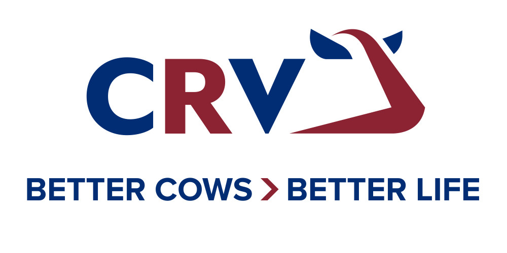 Het nieuwe logo van CRV met een koeienkop die trots vooruit kijkt!