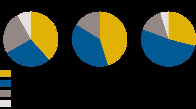 Figura 1 – Participación de producción, conformación (tipo) y longevidad y salud en TPI, NM$ y NVI.